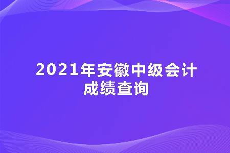 2021年安徽中级会计成绩查询